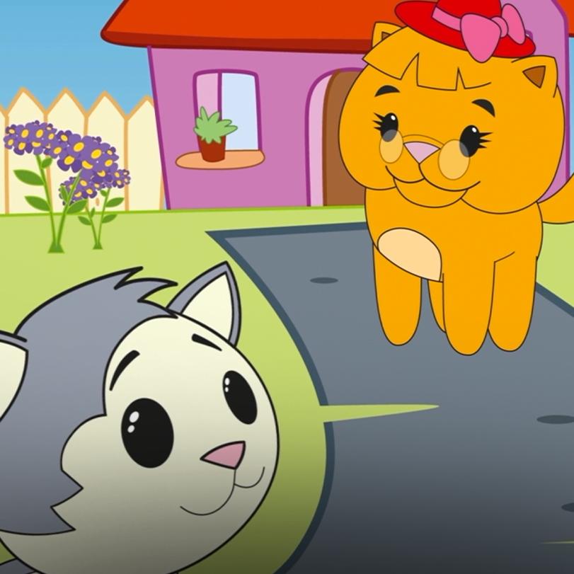 القط بسبوس-2